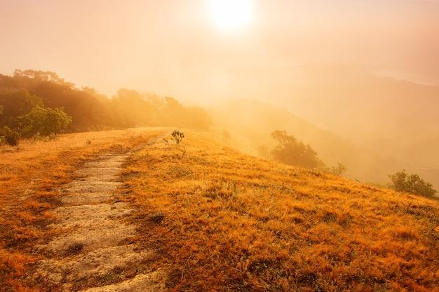 Schöne sommerlandschaft in den bergen mit dem sonnenuntergang