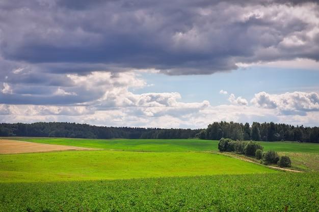 Schöne sommerlandschaft mit grünem gras, straße und wolken