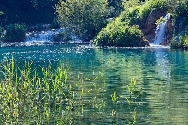 Schöne sommerwasserfälle und see mit stöcken im nationalpark plitvicer seen (kroatien)