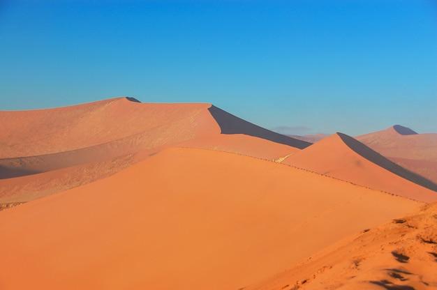 Schöne sonnenaufgangdünen, afrikanische landschaft der namibischen wüste, sossusvlei, namibia, südafrika