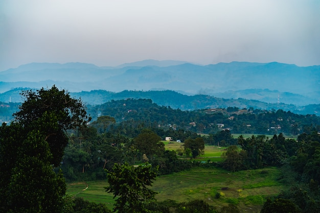 Schöne st.clairs-wasserfalllandschaft in sri lanka