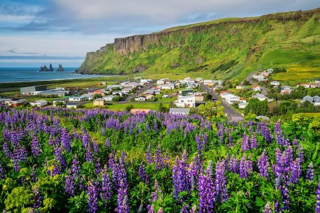 Schöne stadt vik i myrdal island im sommer.