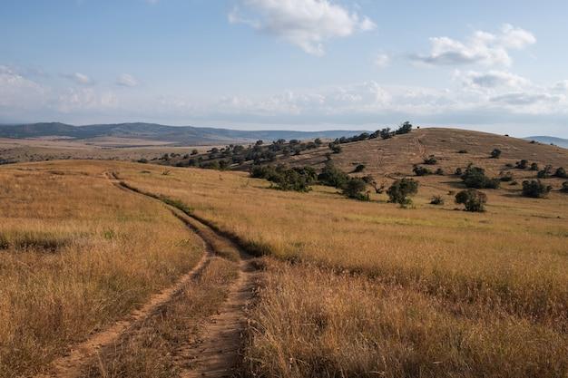 Schöne straße, die durch die felder unter dem blauen himmel in kenia geht