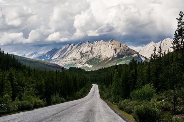 Schöne straße in die berge. berge nach regen. autobahn in der nähe von jasper provincial park, alberta, kanada