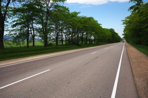 Schöne straße zwischen bäumen. bewegende autos. sommerreisen