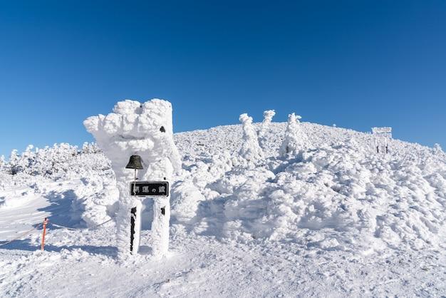 Schöne szenische ansicht des gipfels des zao-berges, yamagata, tohoku, japan mit schnee in der wintersaison.