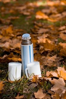 Schöne thermosflasche mit zwei weißen schalen und herbstlaub im park.