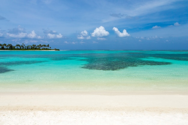 Schöne tropische malediveninsel mit strand