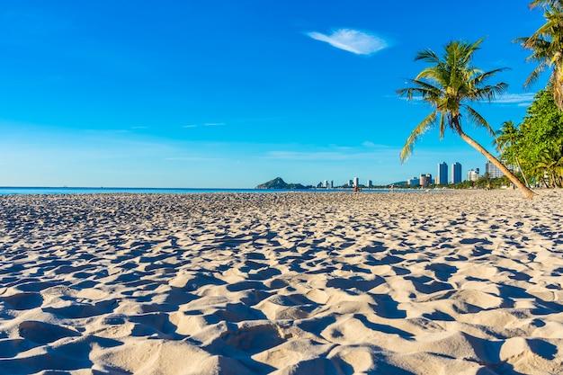 Schöne tropische naturlandschaft im freien von strandmeer und -ozean mit kokosnusspalme