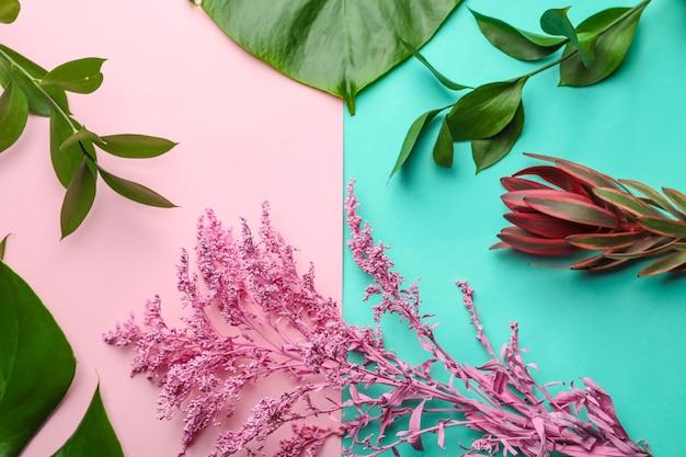 Schöne tropische pflanzen auf farboberfläche