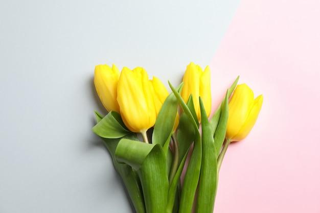 Schöne tulpen auf licht, draufsicht