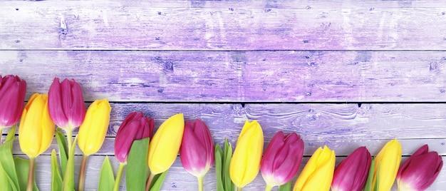 Schöne tulpen. frühlingsnaturhintergrund