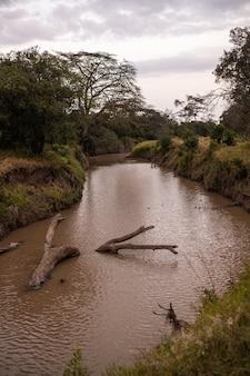 Schöne vertikale aufnahme eines schlammigen flusses, der durch den dschungel in ol pejeta, kenia geht