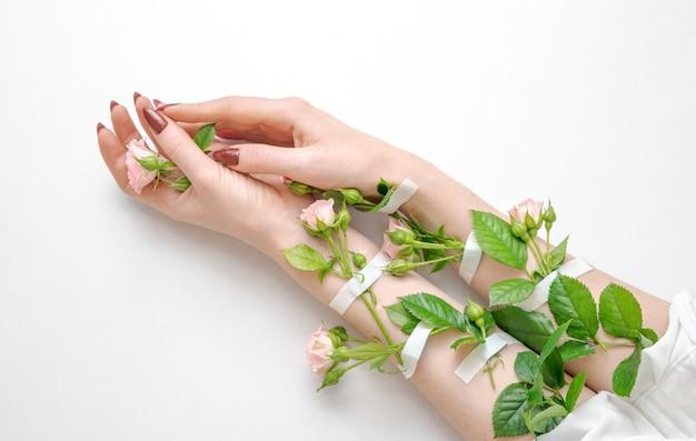 Schöne weibliche hände mit den rosarosenblumen lokalisiert