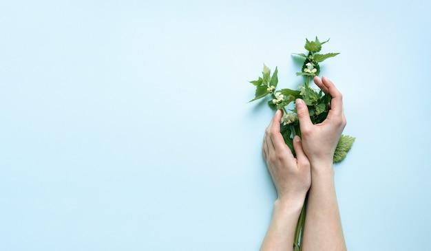 Schöne weibliche zarte hände halten blumen auf einem hellen himmelblauen hintergrund. das konzept der handpflege und des respekts vor der natur.