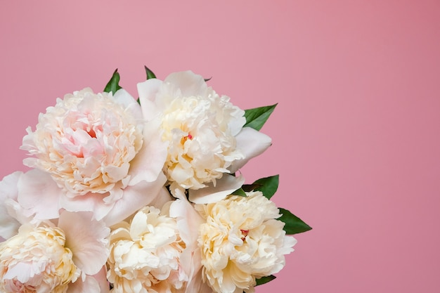 Schöne weiße pfingstrosenblumenstraußnahaufnahme. ansicht von oben. flach liegen