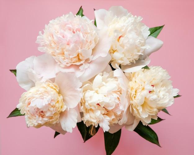Schöne weiße pfingstrosenblumenstraußnahaufnahme auf rosa. ansicht von oben. flach liegen
