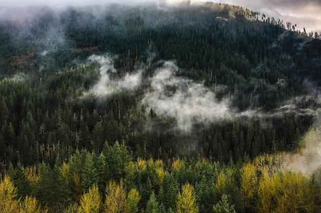 Schöne weite aufnahme von hohen felsigen bergen und hügeln, die während der winterzeit mit natürlichem nebel bedeckt sind
