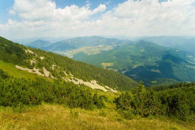 Schöne wiesen auf bergen