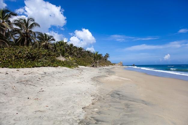 Schöne wilde karibische strandlandschaft bei tayrona, kolumbien