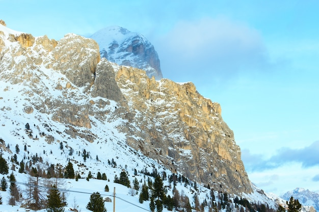 Schöne winterberglandschaft mit tannenbaum am hang falzarego pass