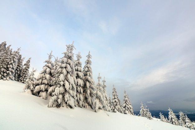 Schöne winterberglandschaft