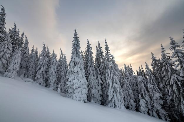 Schöne winterberglandschaft.