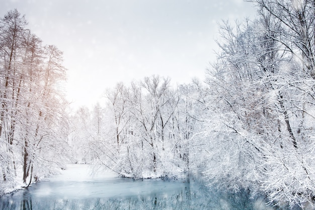 Schöne winterlandschaft mit schneebedeckten bäumen. frohes neues jahr. fröhliche weihnachten