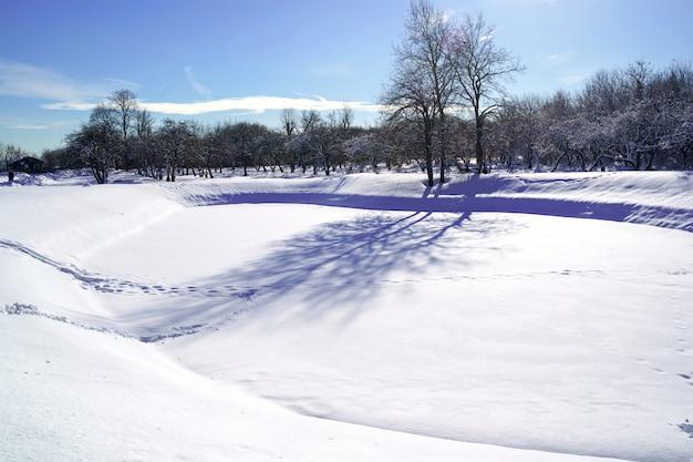 Schöne winterlandschaft mit schneebedeckten bäumen