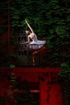 Schöner ballerinatanzen-balletttanz