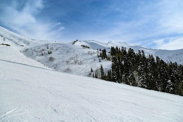 Schöner berg bedeckte schnee im skigebiet rosa khutor in russland. kalter winter sonniger tag, herrliche aussicht in den bergen. ruhe und sport.