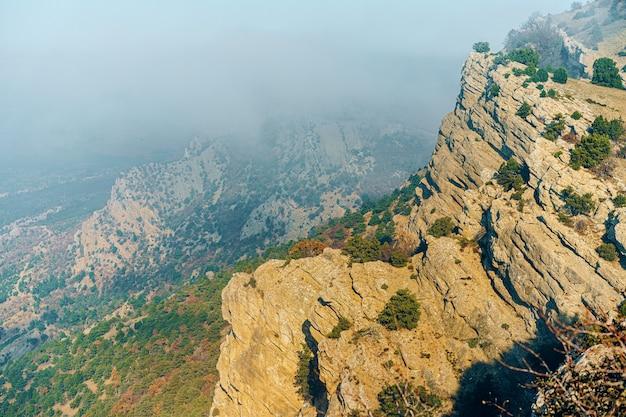 Schöner berg mit wäldern im morgennebelhintergrund