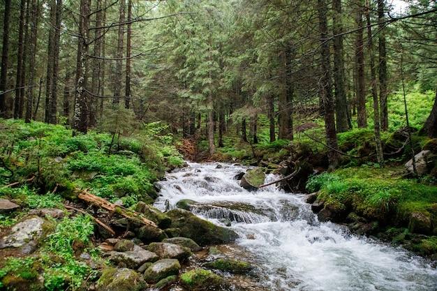 Schöner bergwasserfall mit bäumen im hintergrund