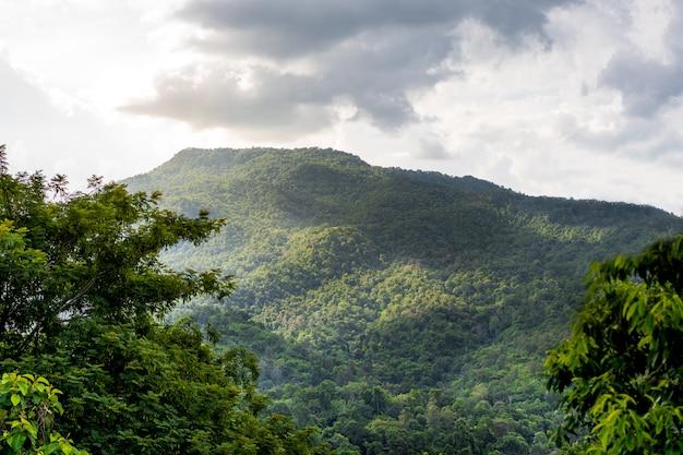 Schöner bewölkter sonnenunterganghimmel über dem berg und dem wald.
