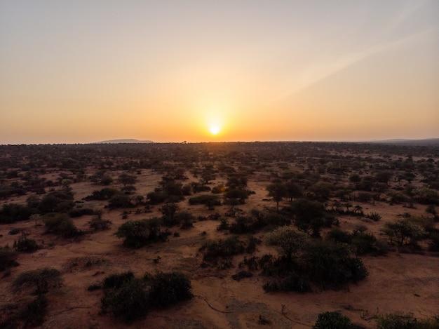 Schöner blick auf das mit bäumen bedeckte feld unter dem sonnenuntergang, der in samburu, kenia gefangen genommen wird