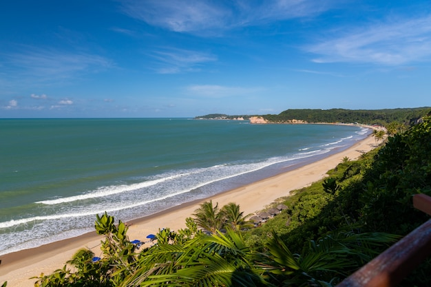 Schöner blick auf den baumbedeckten strand durch den welligen ozean, der in pipa, brasilien gefangen genommen wird