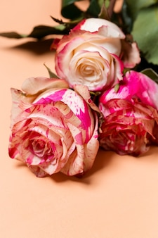 Schöner blumenstrauß der rosa und weißen rosenblumen nahaufnahme auf beigem pastellhintergrund, valentinstag oder hochzeitskarte