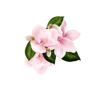 Schöner blumenstrauß mit magnolienblüten