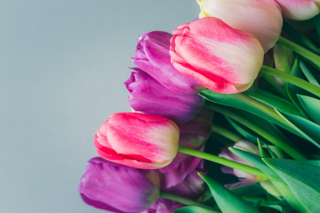 Schöner blumenstrauß von frischen bunten rosa purpurroten tulpenblumen