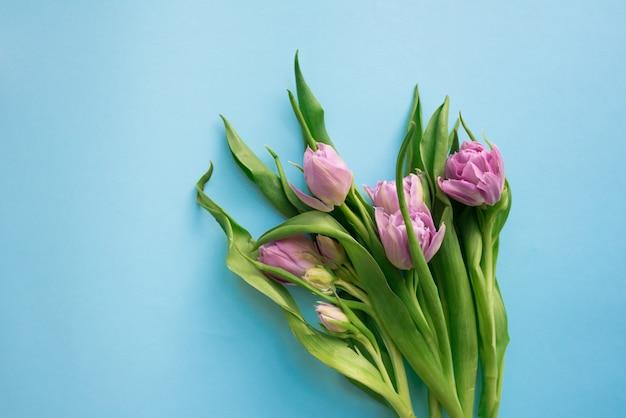 Schöner blumenstrauß von fünf tulpen lokalisiert auf blauem hintergrund. frühlingsblumen. platz für ihren text.