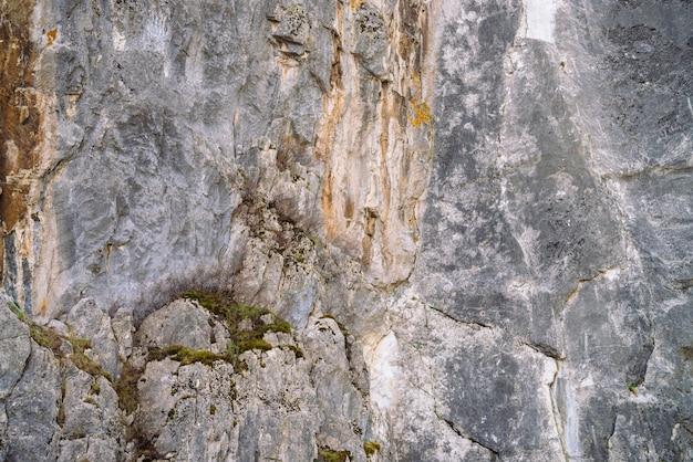 Schöner felsiger grauer strukturierter hintergrund mit moosen und flechten.