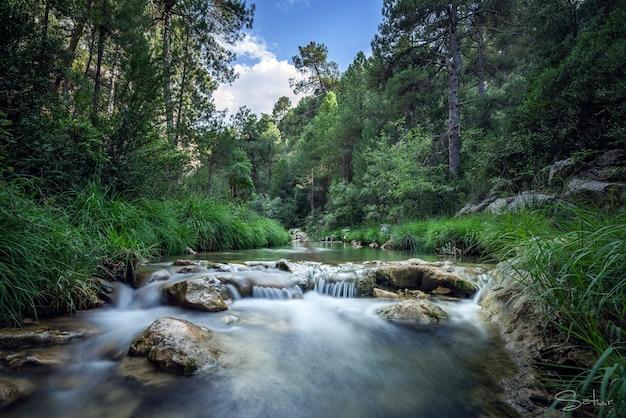Schöner fluss, begleitet von grüner vegetation und blauem himmel