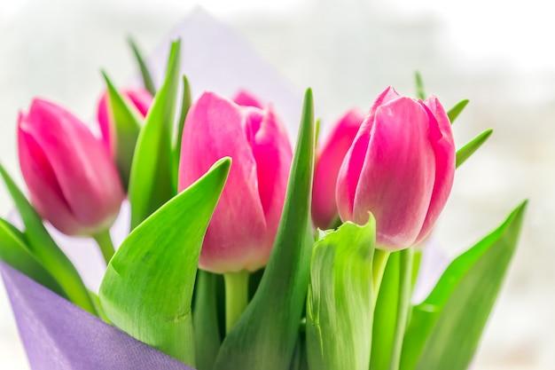 Schöner frühlingsblumenstrauß von rosa tulpen. nahaufnahme, weicher fokus