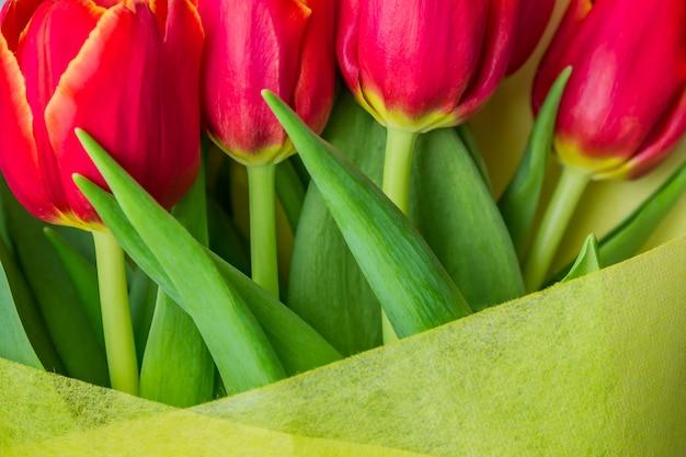 Schöner frühlingsblumenstrauß von roten tulpen