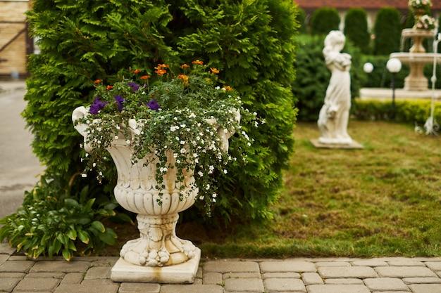 Schöner garten des sommers oder des frühlinges mit gänseblümchenblumen