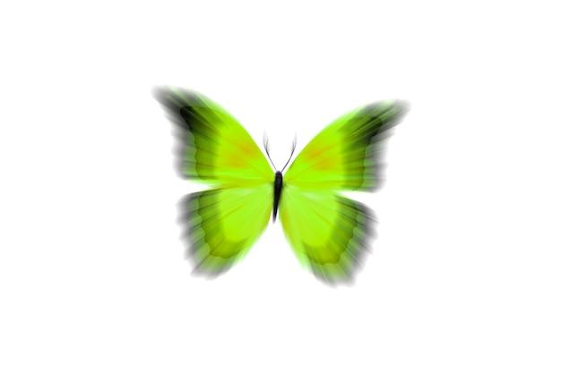 Schöner gelber schmetterling mit unscharfen flügeln. isoliert auf weißem hintergrund