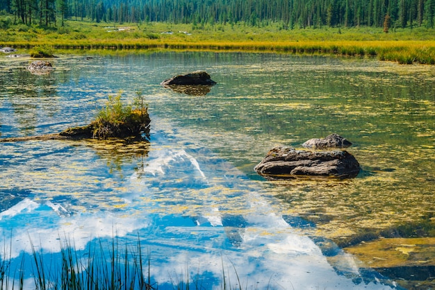 Schöner gletscher reflektierte sich im gebirgsreinen wasser mit anlagen auf unterseite. wundervoller see mit schneebedeckter felsenreflexion. weiße wolken auf schneebedeckten bergen unter blauem himmel. erstaunliche sommerhochlandlandschaft.