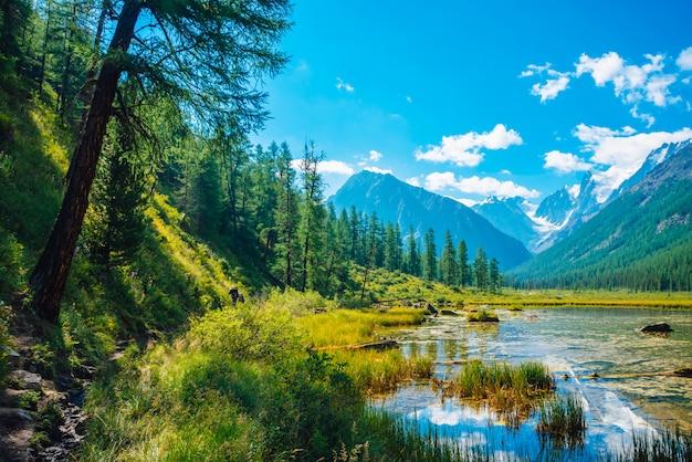 Schöner gletscher spiegelt sich im reinen bergwasser mit pflanzen am boden wider. wunderbarer see mit schneefelsenreflexion. weiße wolken auf schneebedeckten bergen unter blauem himmel. erstaunliche sommerhochlandlandschaft.