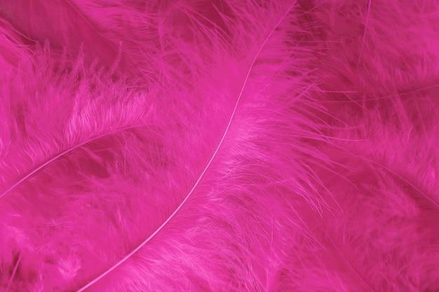 Schöner hellrosa vogelfeder-musterbeschaffenheitshintergrund.