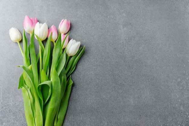 Schöner hintergrund mit frühlingsblumen auf beton. frühlingskonzept